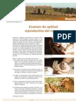 Hoja 04 Manejo.pdf