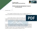 Manual de Inducción en Seguridad y Salud Ocupacional-Versión 2