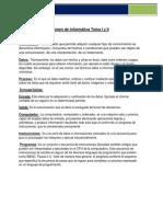 Resumen de Informática Tema I y II