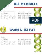 Lipida Membran Dan Asam Nukleat