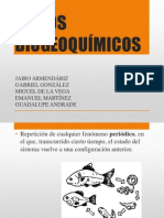 Ciclos Biogeoquímicos y Biodiversidad.pptx