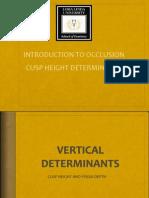 Occulsal Morphology Determinants