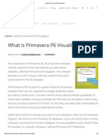 What is Primavera P6 Visualizer