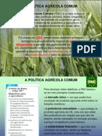 Politica Agricola Com Um
