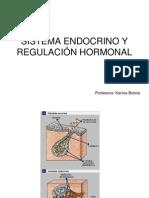 Sistema Endocrino y Regulacion Hormonal (1)