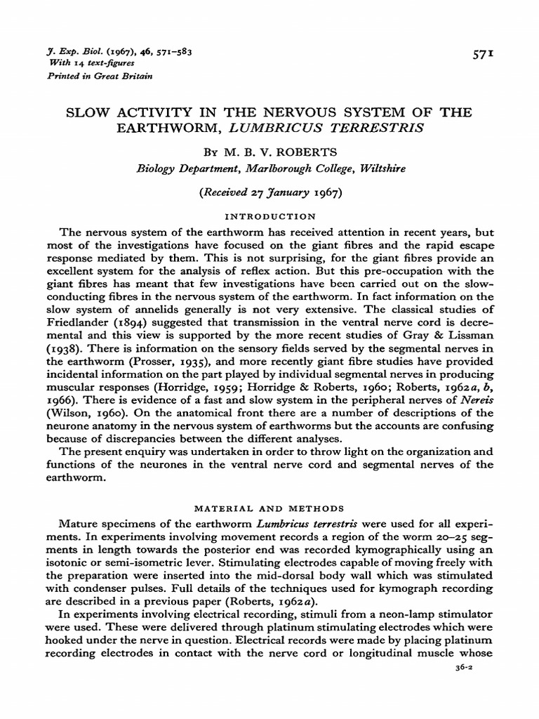 SLOW ACTIVITY IN THE NERVOUS SYSTEM OF THE EARTHWORM, LUMBRICUS ...