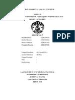 Laporan Praktikum Analisa Struktur Modul D-1