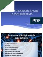 Bases Neurobiológicas de La Esquizofrenia