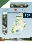 Plan de Ordenacion Forestal Resumen Ejecutivo