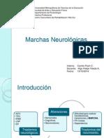 Marchas Neurológicas