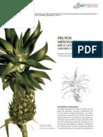 frutos mesoamericanos, breve historia de sabores y sin sabores.pdf