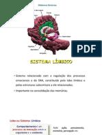 Apresentação SISTEMA LIMBICO.pptx
