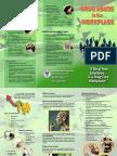 Brochure_Drug Prevention Preview DDB