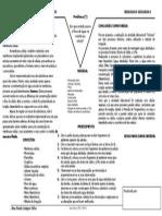 relatório 2 - pétalas