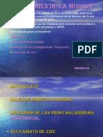 PROTECTORES DE LA MUCOSA.pdf