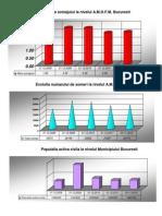 Situatia Somajului ( Grafic) in Perioada 2008-2012