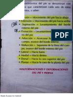 Movimientos Del Pie.-1
