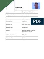 Curriculum - Forma de Hacerlo - Ricardo Paniagua