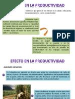 Efecto en La Productividad