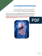 Endocrinología y Bioquímica del Desarrollo Muscular.pdf