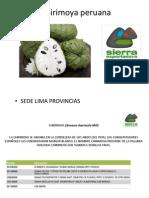 Chirimoya peruana