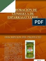 CONSERVA DE ESPARRAGO VERDE.pptx