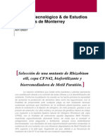 Selección de una mutante de Rhizobium etli, cepa CFN42, biofertilizante y biorremediadora de Metil Paratión