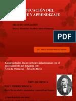 Lenguaje de Broca y Wernicke 2