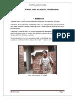 informe de insta 4.docx