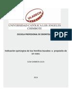 monografia frenillos orales