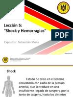 Leccion 5 - Shock y Hemorragias