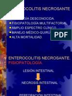ENTEROCOLITIS NECROSANTEimi