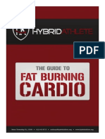 Domination Fat Burning Guide