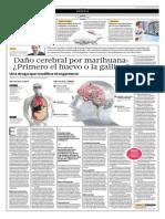 Daño Cerebral Por Marihuana