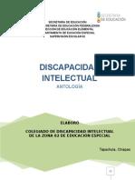 235957828-01-Discapacidad-Intelectual.doc