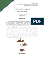_trangenicos_almentos.pdf