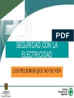 Seguridad Con Electricidad