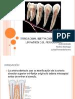 Irrigación, Inervación y Sistema Linfático Del Periodonto