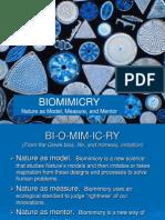Biomimicry Presentation (1swadq)