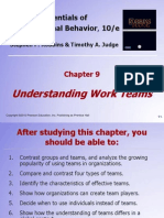 Understanding work teams