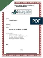 244883890-Analisis-de-La-Oferta-y-Demanda.docx