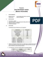 Java Developer Junior (Básico Avanzado)- 16 Sesiones