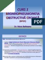 1 Curs BPOC 2014.ppt