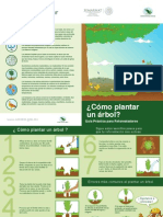 Folleto Plantar Arbol