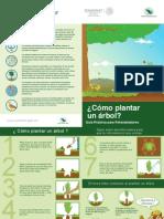 Folleto Plantar Arbol