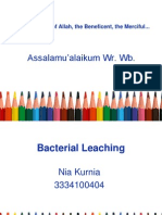 Bacteria Leaching.ppt