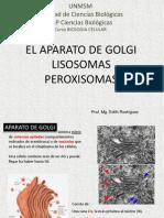 BioCel AGolgi y Lisosomas