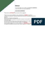 Bio 2 UD 15 Reacciones Metabolicas