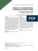 EFECTOS DEL DESARROLLO EN LA MEMORIA DE TRABAJO Y EL APRENDIZAJE DE CATEGORÍAS EN NIÑOS