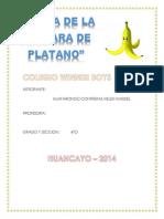 Cascara de Plátano